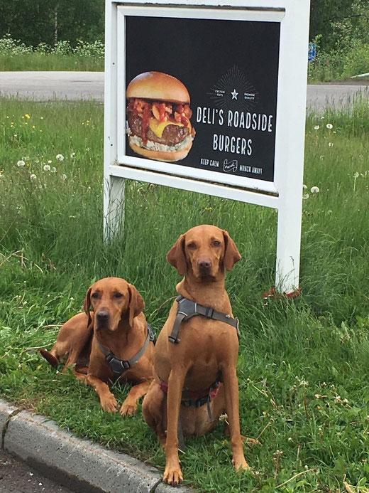 auch wir gehören zur Crew (und träumen gerade von Burgern)
