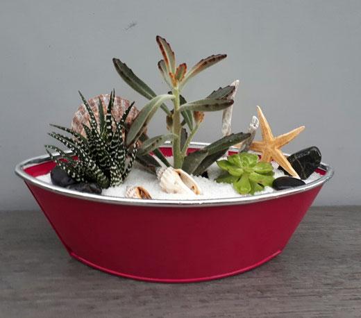 BASSIN D'ARCACHON N°1 /Bateau de plantes grasses et cactées ROSE