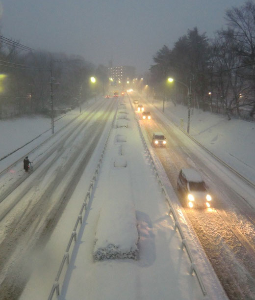 2月9日(2014) 雪の道:野川公園の間を通る東八道路(東京都道14号線)2月8日撮影