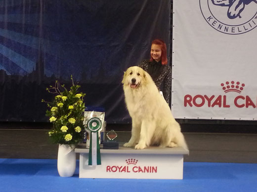 Echo de'Chien Bianca BOB and Group 4th under judge Nina Karlsdotter, Sweden