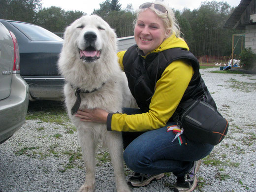 "Working pyrenean mountain dog Echo de'Chien Bellefleur ""Fleur"" (almost 3 years old) and me"