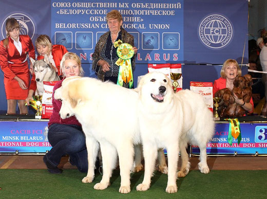 BEST IN SHOW BREEDER!!!