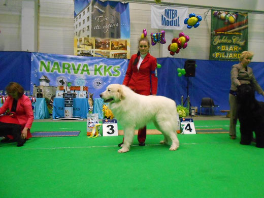 Echo de'Chien Cruise BOB + Group 3rd