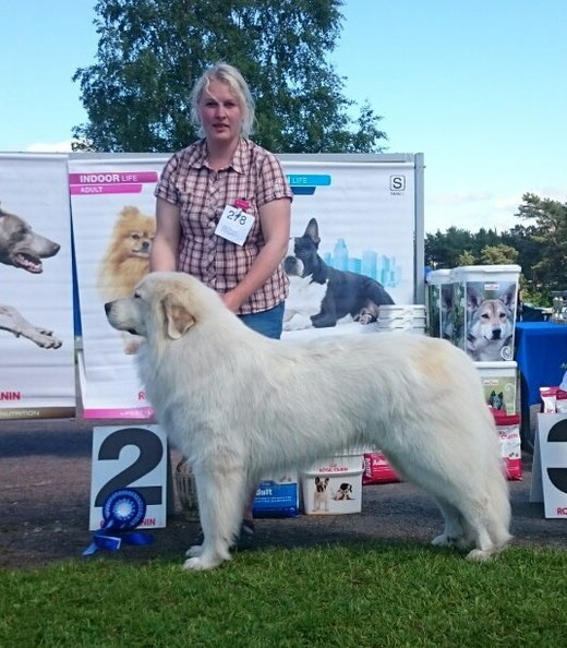 Echo de'Chien Aslan Warrior Group 2nd on 28th of June 2015 by judge Zvi Kupferberg, Israel