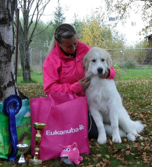 Echo de'Chien Escuda pour Garcon BOB Baby Puppy and BIS Puppy #2