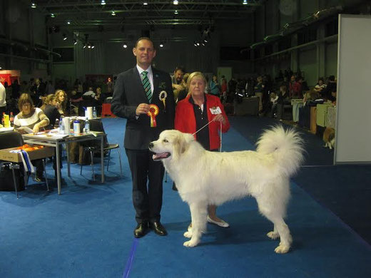 Echo de'Chien Cornelius BOB and judge Nemanja Jovanovic, Serbia