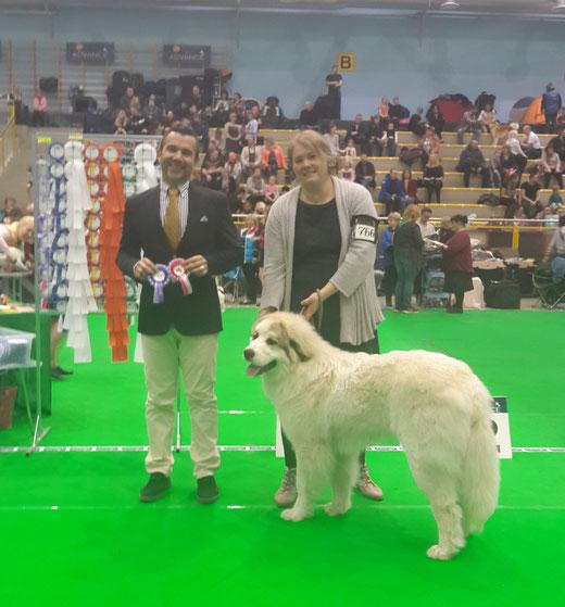 Echo de'Chien Florian  - BOB Puppy