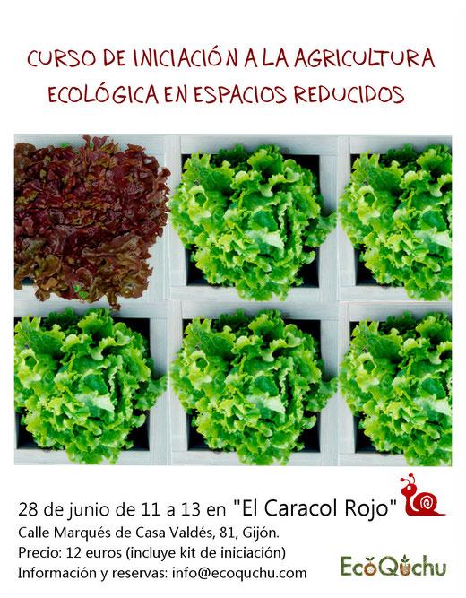 ¡¡Curso en Gijón!! Los temas a tratar serán: Plantificación del huerto, herramientas, qué cultivar, siembra, trasplante y cuidados. Habrá ejemplos prácticos.