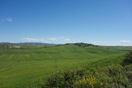 Die Crete Senesi ist Landschaft pur: So stellt man sich die Toskana vor