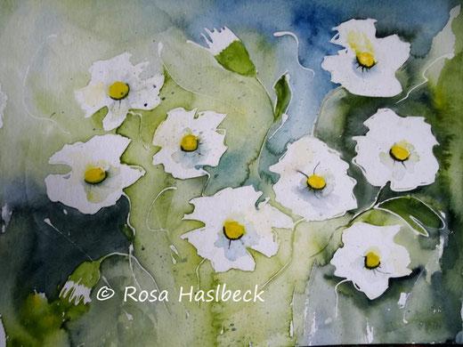 malerei kaufen, kunst kaufen,  bild kaufen, Aquarell ,Weiße Blumen aquarell,, blume, weiß, braun,, bild, handgemalt, gelb, kunst, bild, wanddekoration, dekoration, wandbild, art, malen, malerei