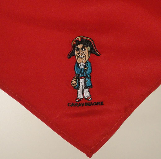 Pañuelo Cara-Vinagre Infantil