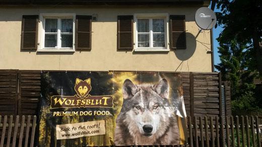 Banner der Firma Wolfsblut