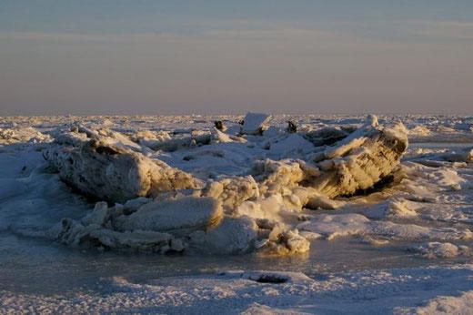 Die Mariann im Eis, Winter 2010/2011