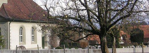 Kirchgemeinde Limpach - Dekofoto Formulare