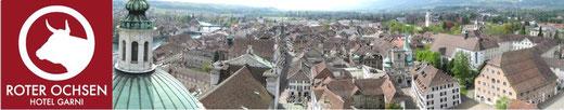 Top Preisleistung Roter Ochse Solothurn