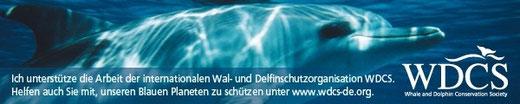 WDCS Deutschland Die WDCS ist die globale Stimme für den Schutz von Walen und Delfinen und ihrem Lebensraum.