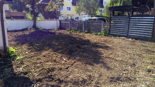 Garten Komplettrodung