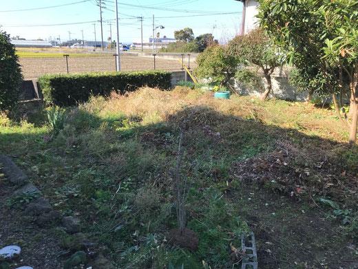 家庭菜園への道 初日①