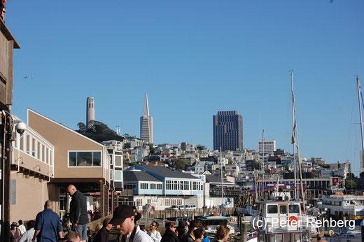 San Francisco: Pier 39, Links der Coit Tower. Ihn besuchen wir morgen