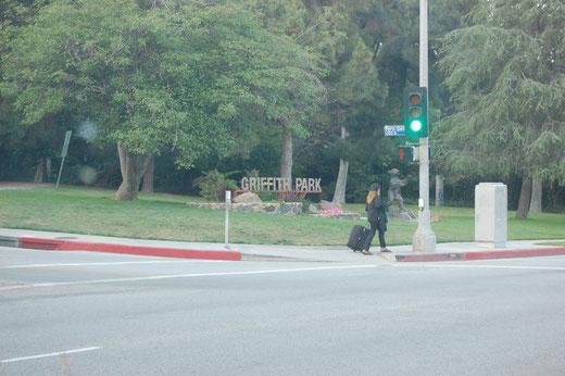 Anfahrt zum Griffith Park
