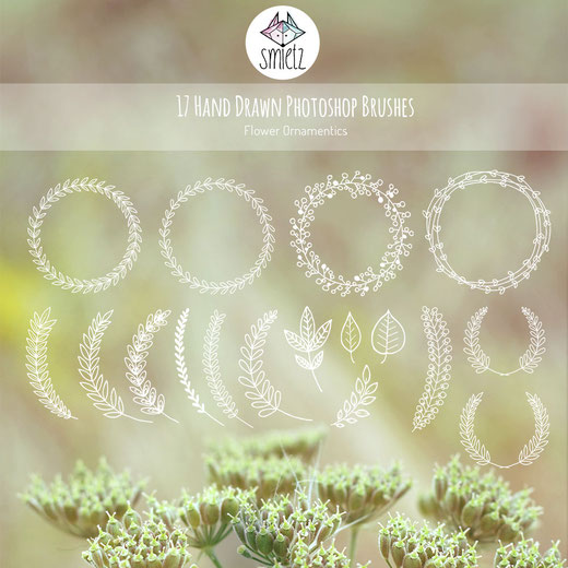 handdrawn Photoshop Brushes flower Ornamentics