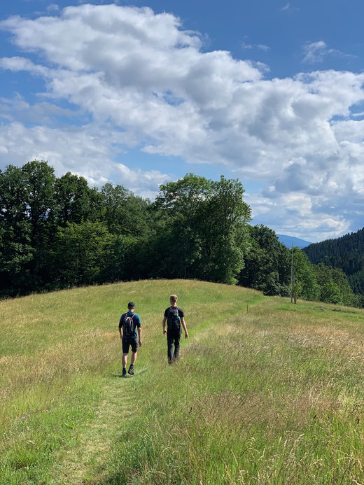 Wanderer im Schwarzwald