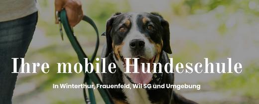 Mobiles Happydog Hundetraining mit Gisela Stillhard