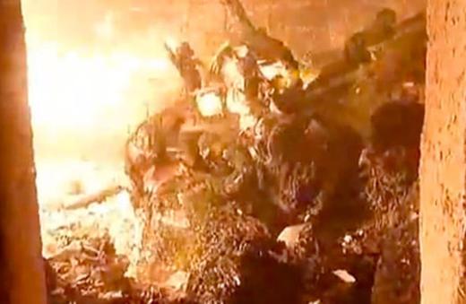 ゴミのように焼かれる「命」、豊かといわれる日本で行われている処分、これは違法ではないかとの見方もあるのに。