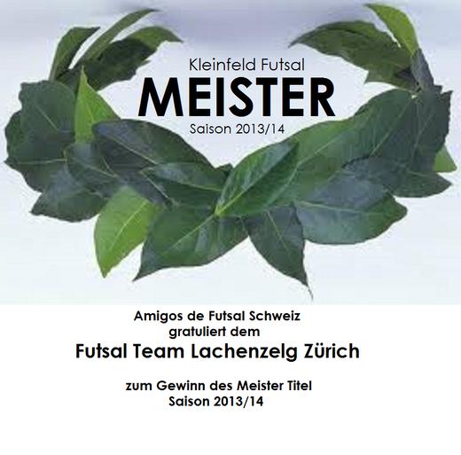 Amigos de Futsal Schweiz Meister 2013/2014