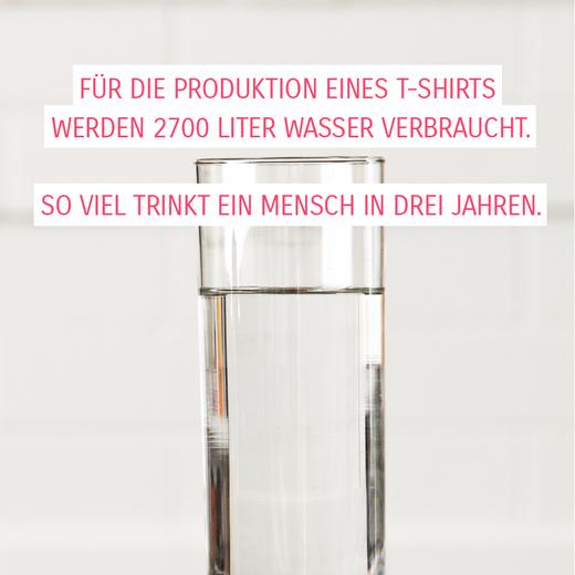 Fakten Wasserverbrauch bei der Produktion eines T-Shirt