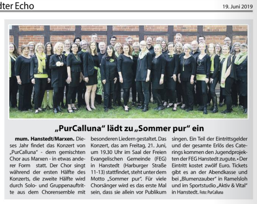Sommer pur Konzert 2019 (Wochenblatt 19. Juni 2019)