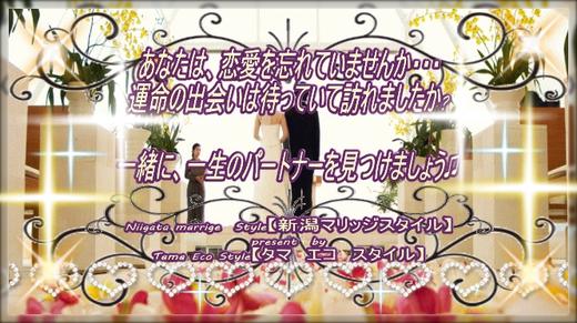 恋愛婚活マッチング【Niigata Marriage Style】結婚相談所サービス
