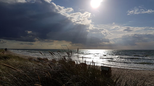 Ostsee Fischland Krimi Corinna Kastner Wustrow Darß Zingst Mecklenburg-Vorpommern Stralsund Polizist
