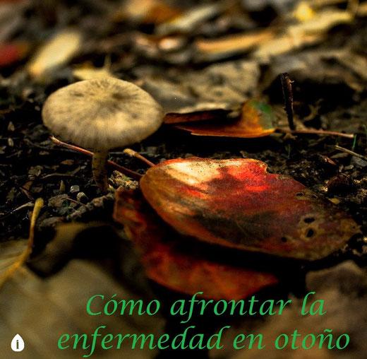 Fotografía de Irene Caminero