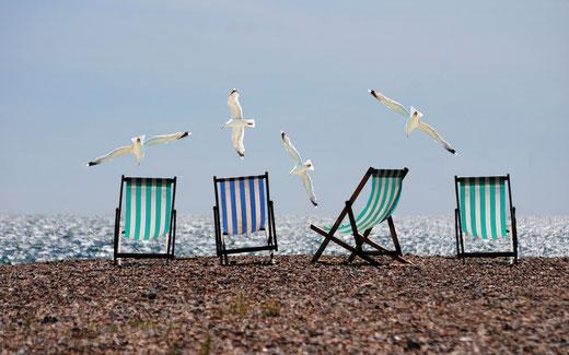 Vier Liegestühle am Strand über denen vier weiße Möwen kreisen