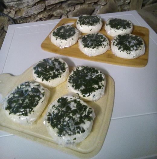 Sigi-Taler-Frischkäse mit Schnittlauch