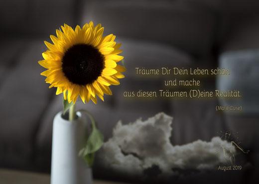 Burgstaller Sonnenblume