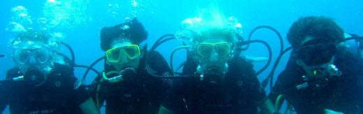 Playa del Carmen Scuba Diving - Albertos Scuba