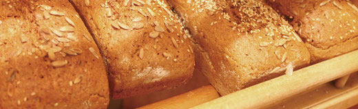 alle Fotos: Biobäckerei Kürrer (vormals Gepp)