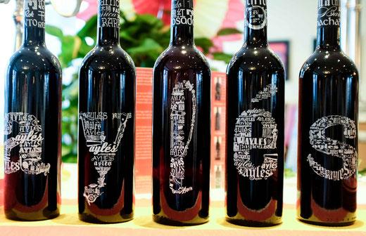 Am 12. Juni 2015 präsentierte Fernando Reyes die Weine der Bodega Pago Aylés im Rahmen unseres jährlich stattfindenden Weinevents