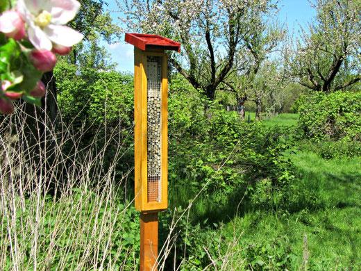 Wildbienen Säule von Bienenretter