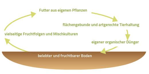 Ein möglichst geschlossener Nährstoffkreislauf ist die Grundlage für den Bio-Landbau.