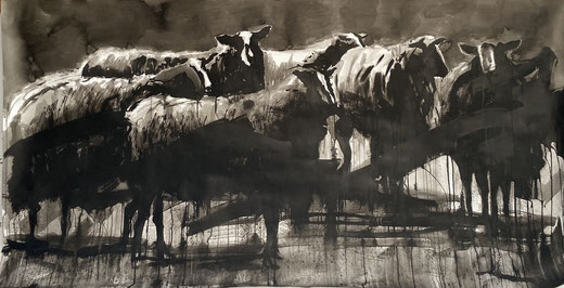 Large ink drawing of a flock of Zwartbles sheep