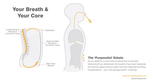Burrell Education - Your Breath & Core Image (www.burrelleducation.com)