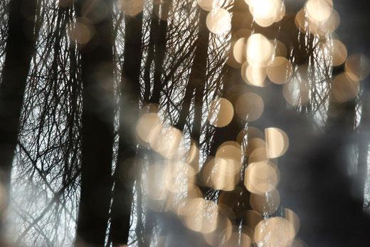 Lichtpunkte, Naturfotografie, Gedanken zum Tod