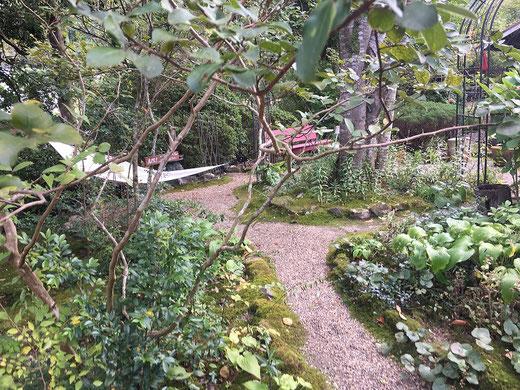 プルーンの木手入れの行き届いた庭