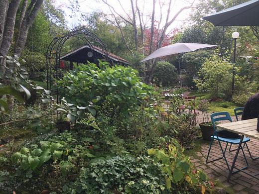 庭にテラス席が点在