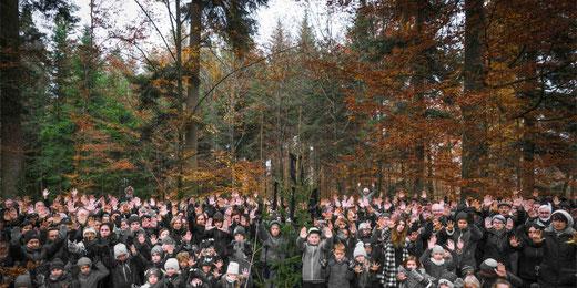 Der Kampf um den Tägernauer Wald geht in eine neue Runde. Bild: depo-nie.com