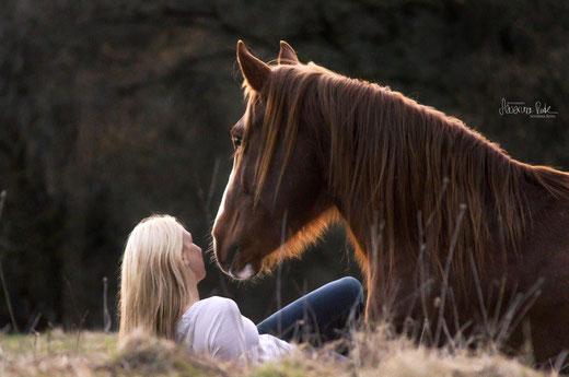 Vertrauen in mein Pferd