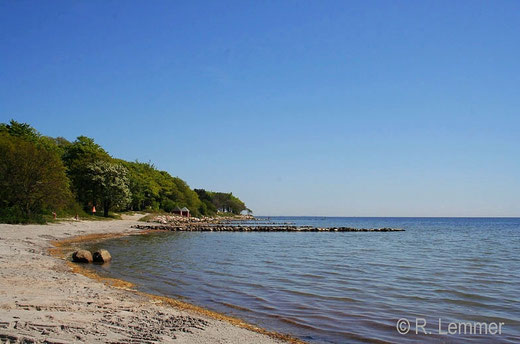 Strand bei Nysted